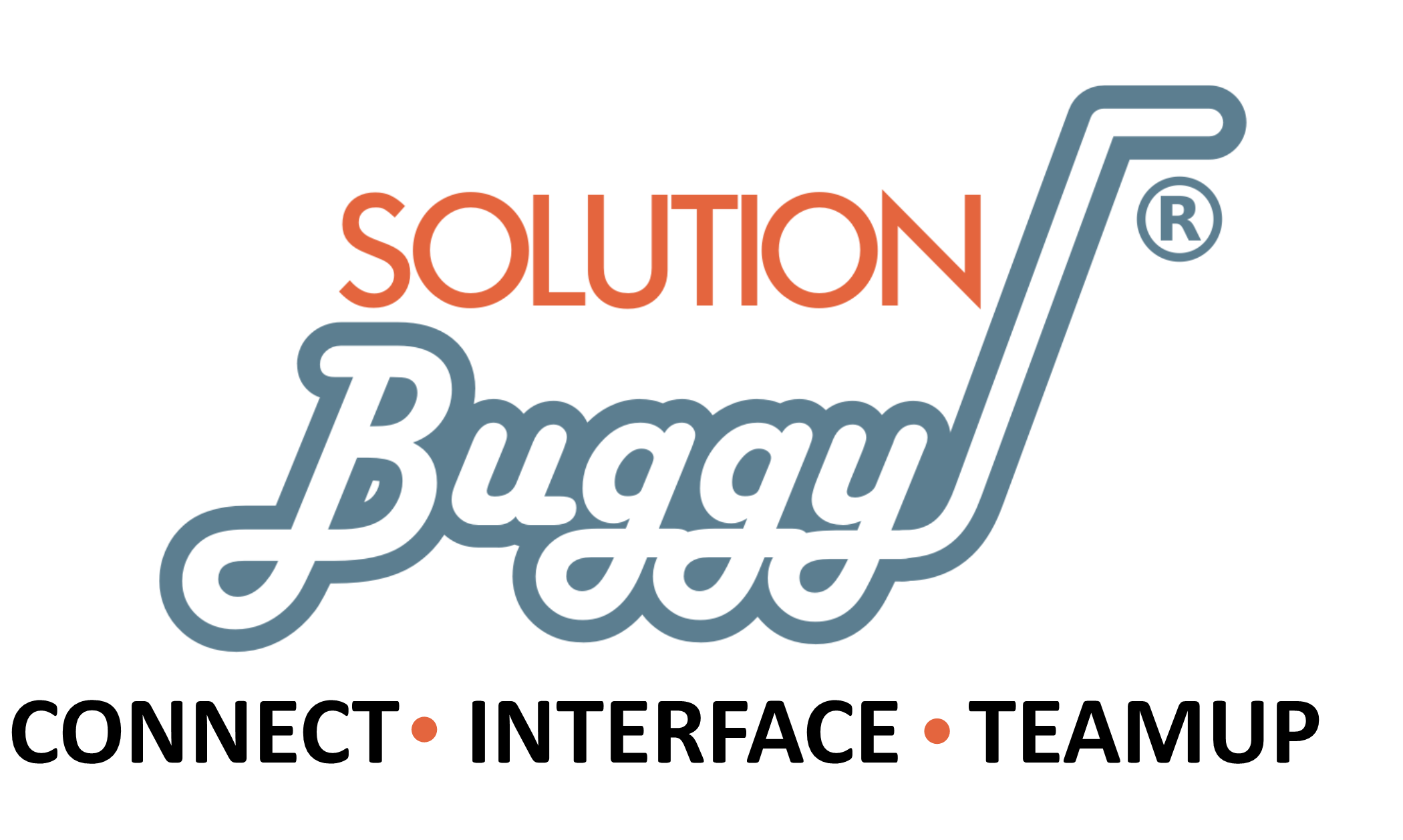 Solution Buggy