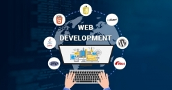 No1 best website development company in our country.
