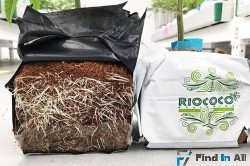 Buy OMRI certified coir products with quality assurance from Riococo/Ceyhinz Link, Inc.