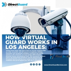 Best Virtual Guard Services - Direct Guard Services