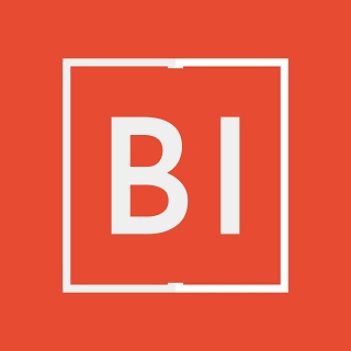 BI Consulting Group